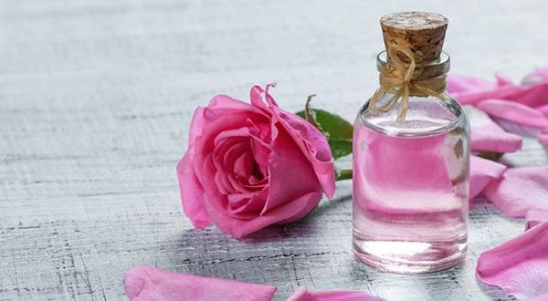 مضرات و منع مصرف گلاب و عرق آن چیست؟