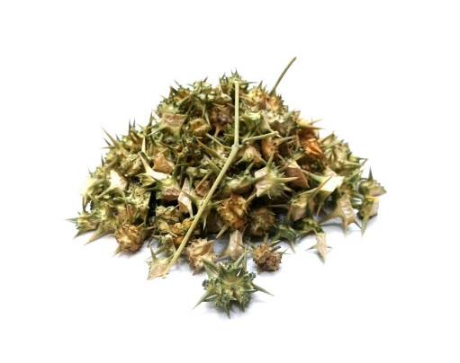 خاصیت گیاه خارخاسک برای مردان