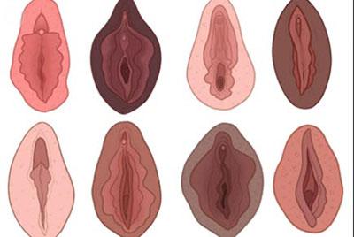اندازه واژن چقدر است